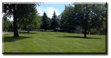 Ground Force Lawncare offers Twin Cities, MN homeowners and businesses weekly lawn maintenance services including spray application packages.