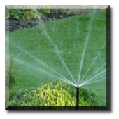 Have Ground Force design and install an irrigation system that is meant for your yard or commercial property. Contact us for an estimate.